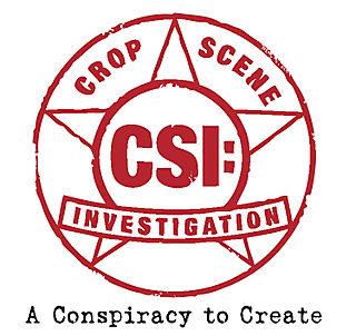 20_1218068015_CSI__Star_Logo